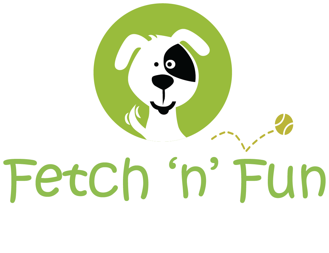 Fetch n Fun Loog White