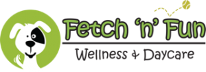 Fetch n fun Logo