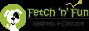 Fetch n fun Logo
